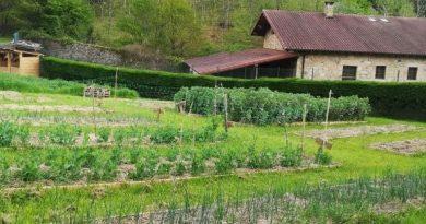 """[dotb.eus] """"Lur Bizia"""", el huerto ecológico impulsado por las Misioneras Mercedarias de Berriz"""